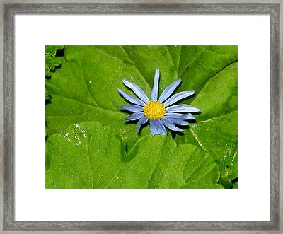 How Did They Do That Framed Print by DEBRON Art