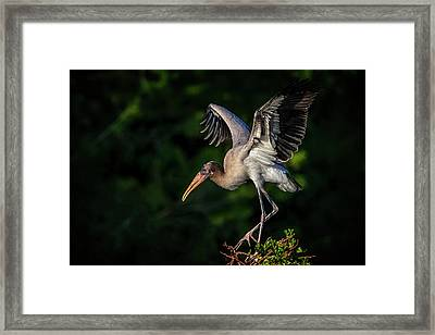 How Do These Things Work Framed Print