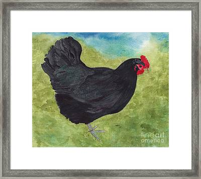 How Do You Like My Little Black Dress? Iridescent Black Hen Framed Print