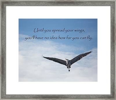 How Far Can You Fly Framed Print by Bill Wakeley