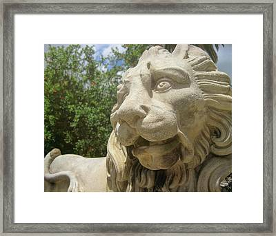 How Loud Is A Lion Framed Print by JAMART Photography