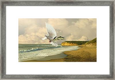 How Many Seas Must A White Dove Sail? Framed Print
