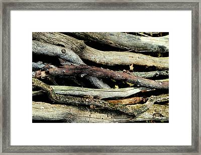 How Much Wood Would A Woodchuck Chuck Natural Wood Pile Ledge Park Wisconsin Framed Print by Laura Pineda