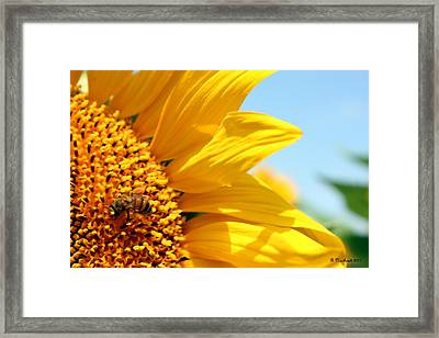 How Sweet It Is Framed Print by Betty Northcutt