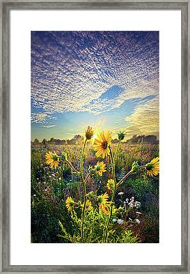 How The Story Goes Framed Print by Phil Koch