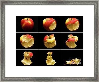 How To Eat An Apple In 9 Easy Steps Framed Print