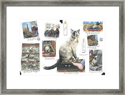 How To Live With A Cat Framed Print