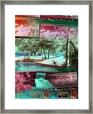 How Would You Like To Spend An Hour Framed Print by Deborah Hildinger