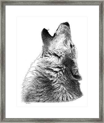 Howling Timber Wolf Framed Print