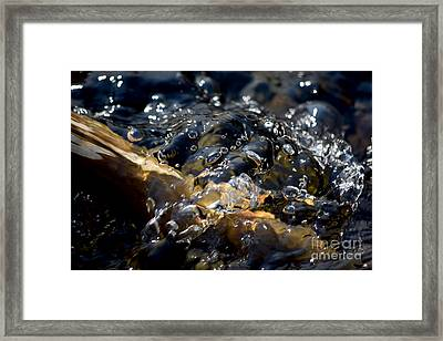 #howlittleoureyespermitustosee Framed Print by Becky Furgason