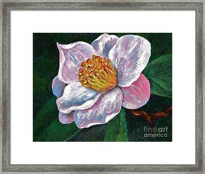 Hoyt Flower Oil 2 Framed Print by Emily Michaud