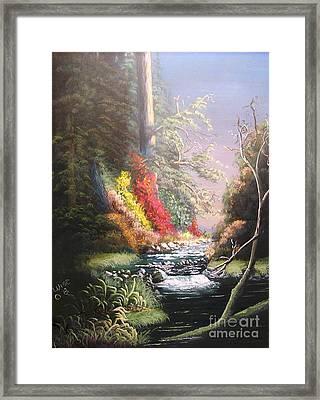 Huckleberry Creek Framed Print by John Wise