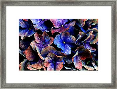 Framed Print featuring the digital art Hues by Julian Perry