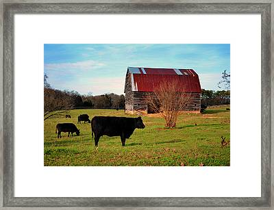 Huffacker Farm Framed Print
