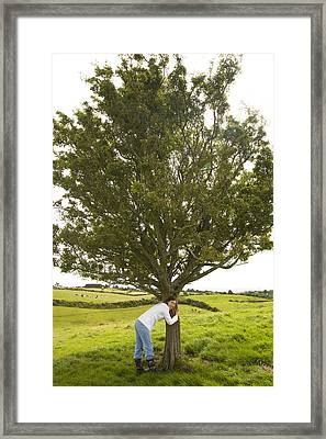 Framed Print featuring the photograph Hugging The Fairy Tree In Ireland by Ian Middleton