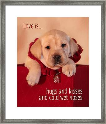 Hugs And Kisses Framed Print by Lori Deiter