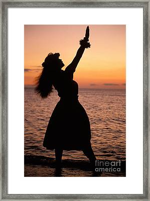 Hula At Sunset Framed Print by Allan Seiden - Printscapes