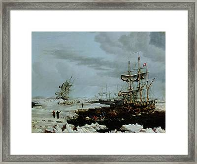 Hull Whalers In The Arctic  Framed Print by Thomas A Binks