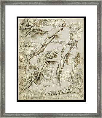 Framed Print featuring the painting Human Arm Study by James Christopher Hill