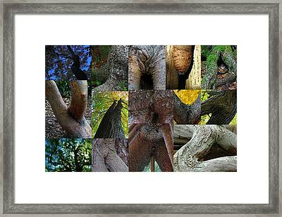 Human Forms In Nature Framed Print