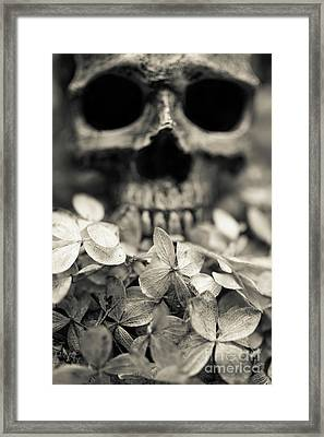 Framed Print featuring the photograph Human Skull Among Flowers by Edward Fielding