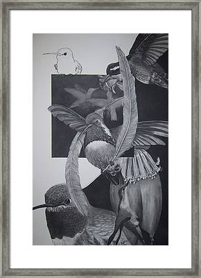 Humingbirds Framed Print by Richard Ong