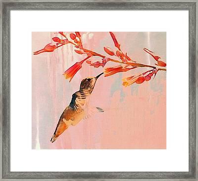 Hummer Art Framed Print