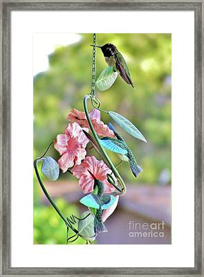 Hummer On Hummers Framed Print