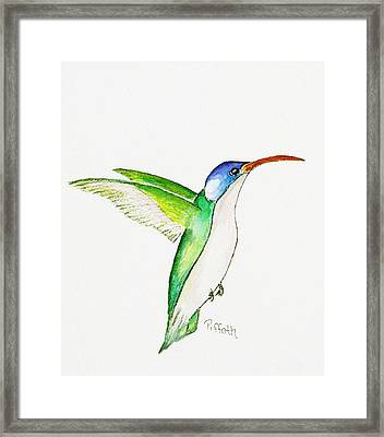 Hummer Framed Print by Patricia Piffath