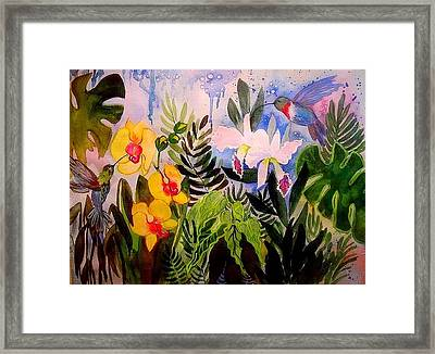 Hummers And Orchids Framed Print