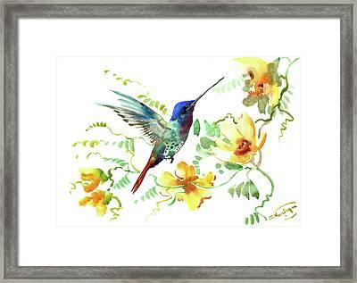 Hummibgbird And Yellow Flowers Framed Print