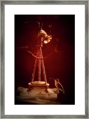 Humming Bird At Sunrise 02 Vertical Framed Print