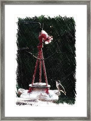 Humming Bird At Sunrise Pa Vertical Framed Print