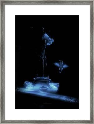 Humming Bird Humming Bird At Sunrise Blue Framed Print