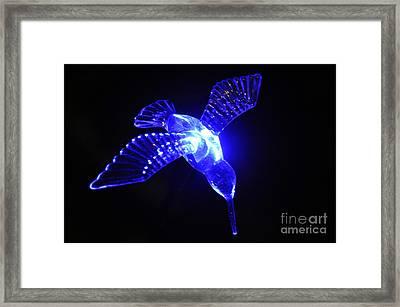 Humming Bird Light Framed Print