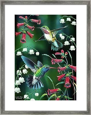 Humming Birds 2 Framed Print by JQ Licensing