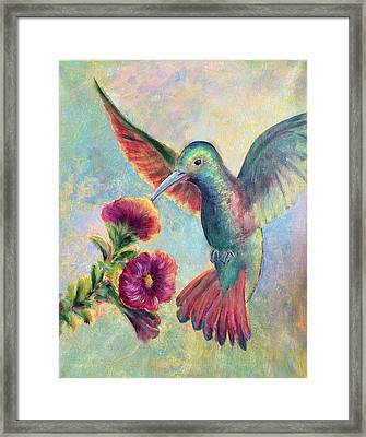 Humming Jewel Framed Print