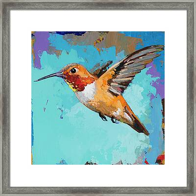 Hummingbird #11 Framed Print by David Palmer