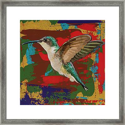 Hummingbird #12 Framed Print by David Palmer