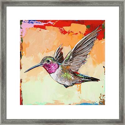 Hummingbird #13 Framed Print