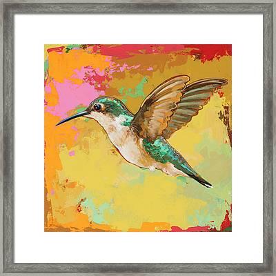 Hummingbird #19 Framed Print