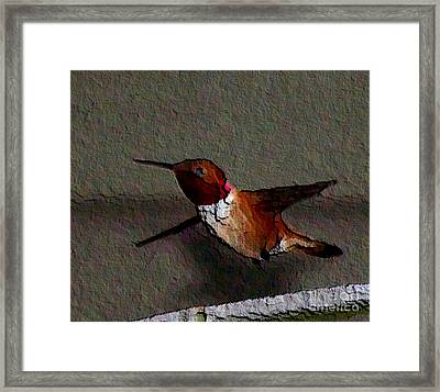 Framed Print featuring the photograph Hummingbird 2 - Embossed by Erica Hanel