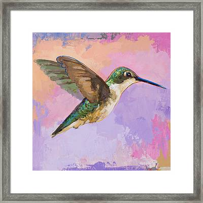 Hummingbird #2 Framed Print
