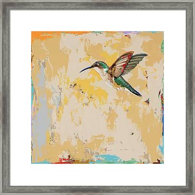Hummingbird #23 Framed Print