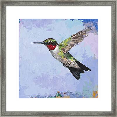 Hummingbird #3 Framed Print by David Palmer