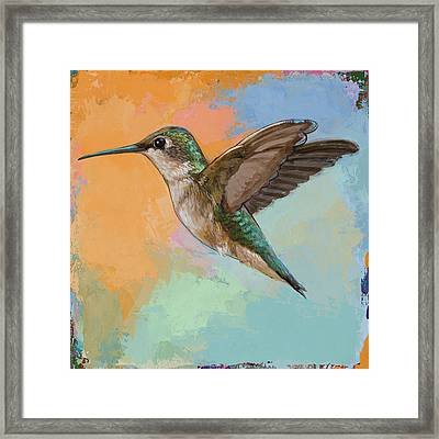 Hummingbird #5 Framed Print by David Palmer