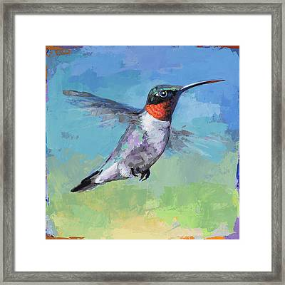 Hummingbird #8 Framed Print by David Palmer