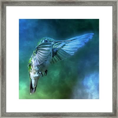 Hummingbird A Whisper In The Fog  Framed Print