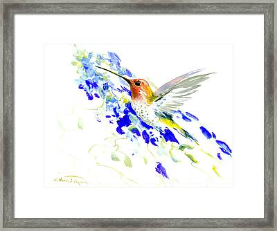 Hummingbird And Blue Flowers Framed Print