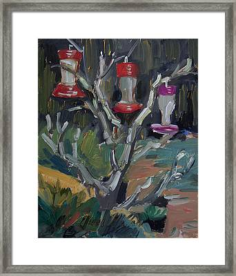 Hummingbird Feeders In Idyllwild Framed Print by Diane McClary